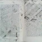 Зразок поводження силовиків із книгами