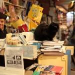 book_gondola_8
