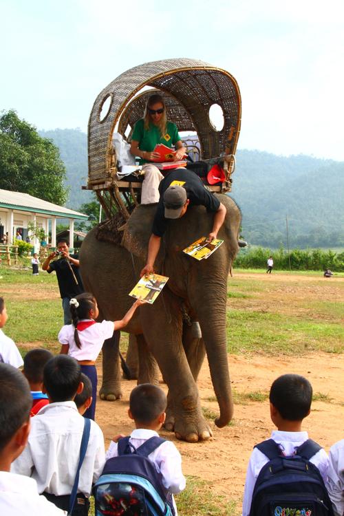 ElefantAsia_I