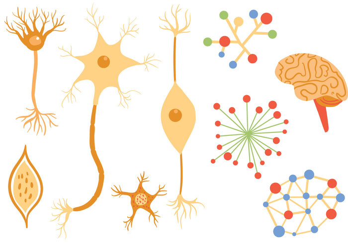 free-neuron-vectors
